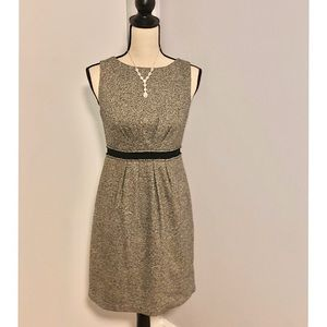 Professional and Comfortable LOFT dress
